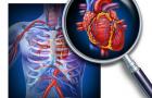 Приглашаем на интегральную лекцию «Синдром кардиомегалии»